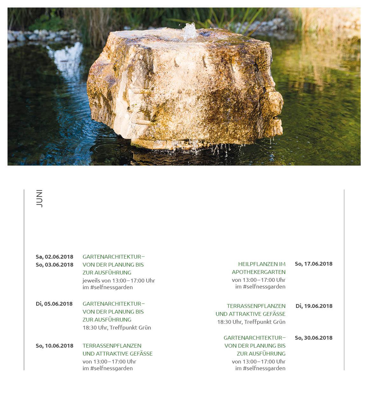 FINAL-Team-Gruen-Veranstaltungskalender_Din-lang_20S-WEB6