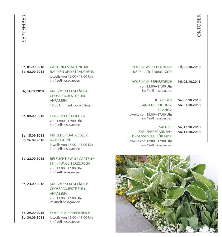 FINAL-Team-Gruen-Veranstaltungskalender_Din-lang_20S-WEB9