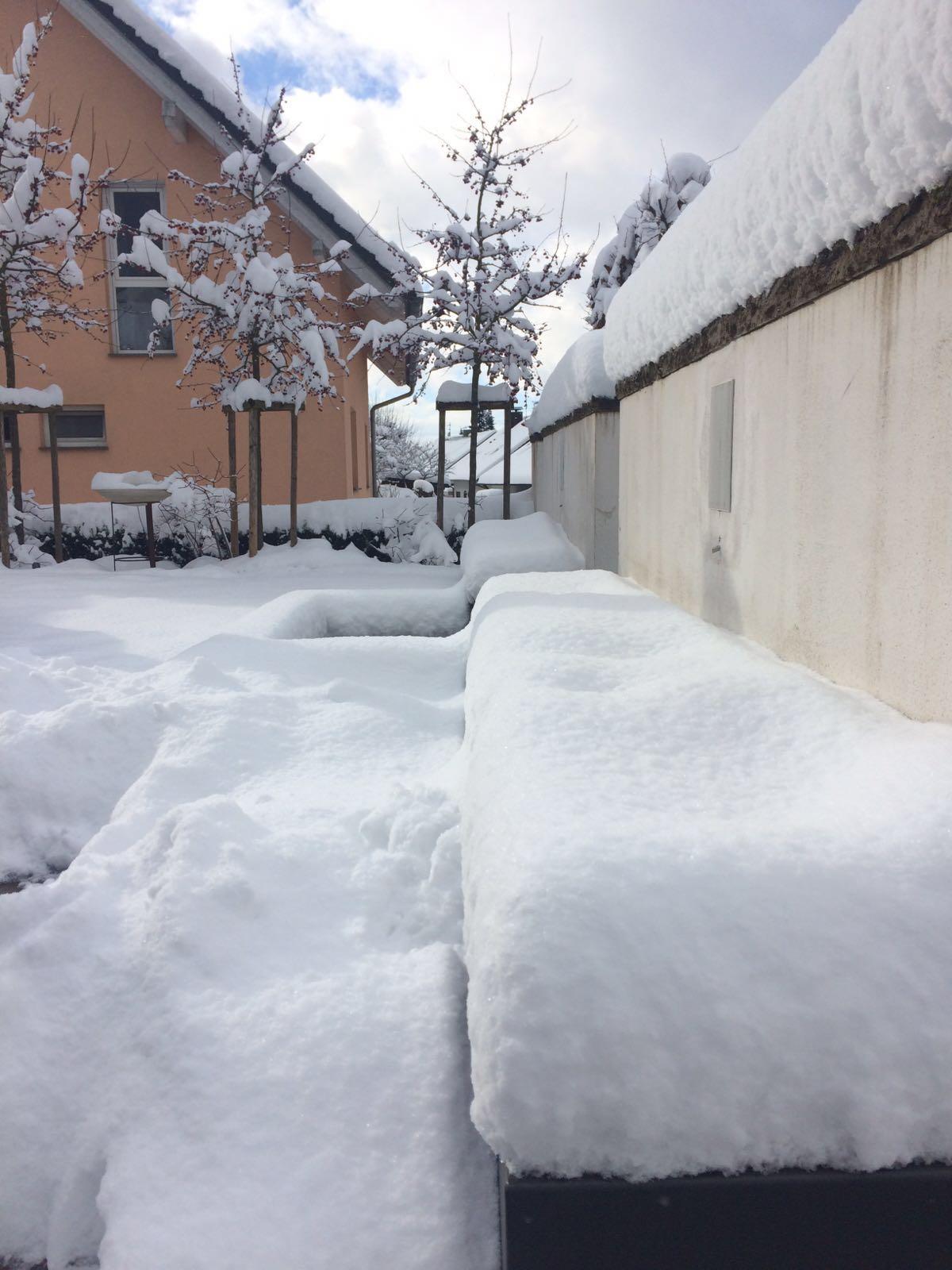 team-gruen-elzach-schaugarten-winter-5