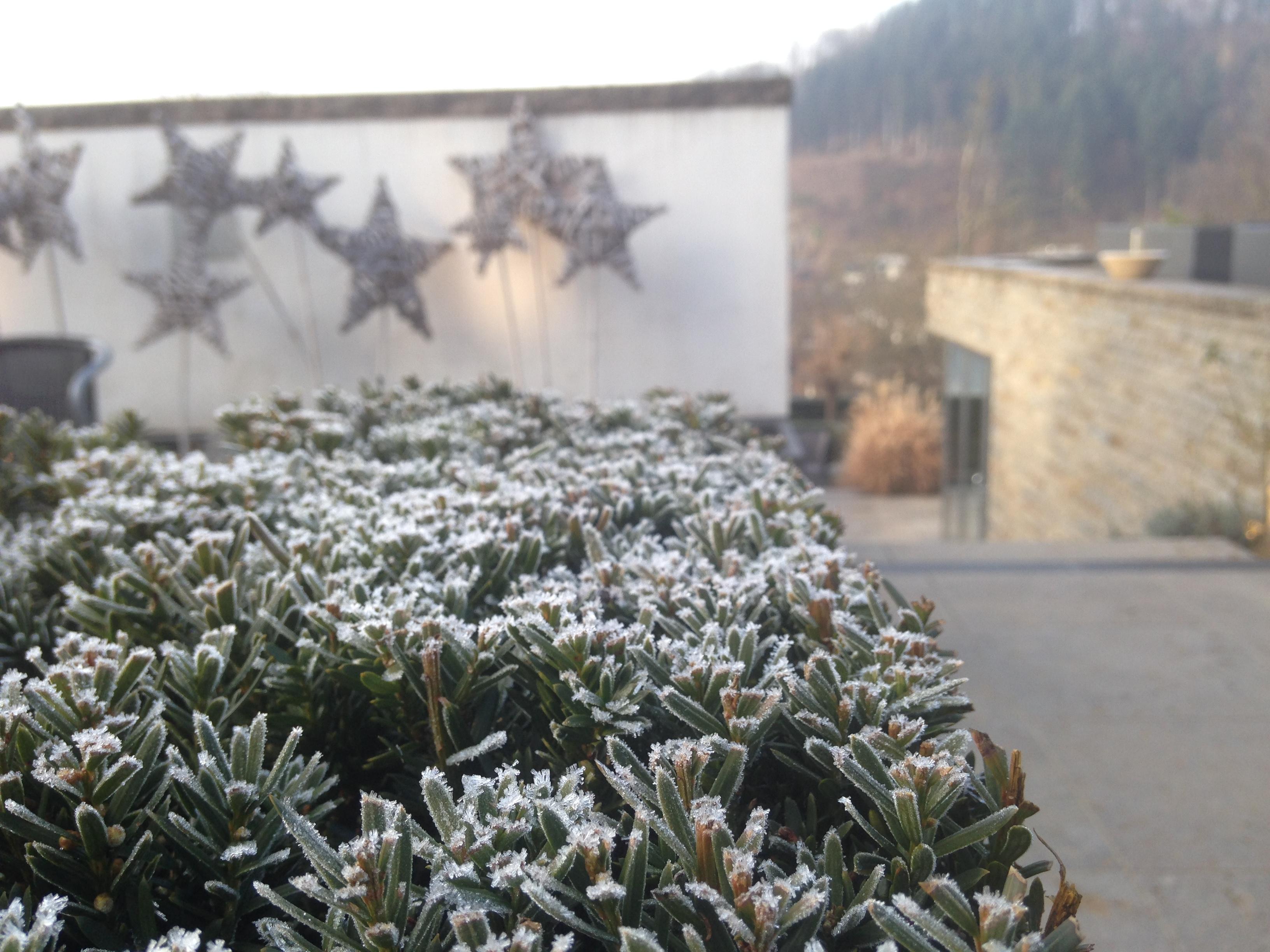 team-gruen-elzach-schaugarten-winter-7