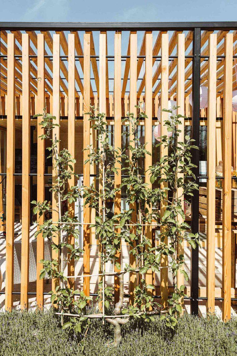 Sichtschutz Fur Den Garten Team Grun Furtner Althaus